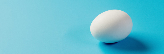 White egg on a blue background